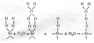 молекулы воды с протонизированным водородом гидроксилов алюмосиликатов.